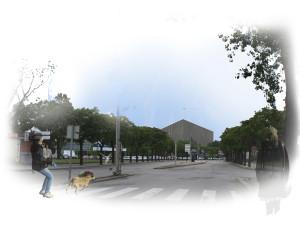 Ciber-Ágora en Aveiro